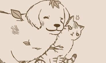 Truyện hài ngắn Mèo và Chó với cái kết bảo đảm sẽ khiến bạn yêu chúng hơn nữa